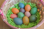brown free range colored easter eggs