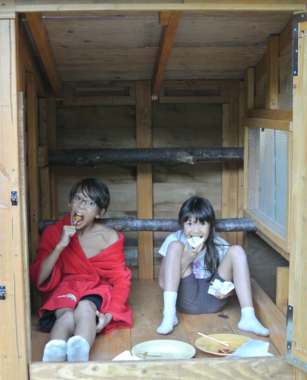 kids-in-coop